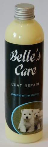 bc coat repair